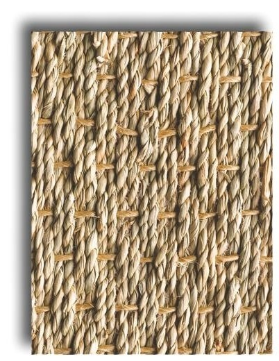 Seagrass (Band Katoen)