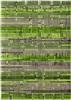 Louis de Poortere Mad Men 8427 Greenback [[ gaat uit collectie ]] Grijs, Groen